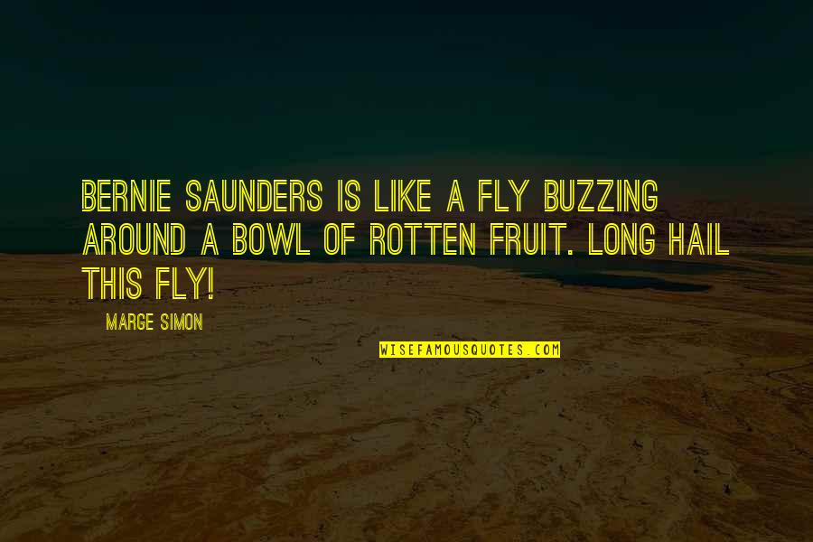 Fruit Fly Quotes By Marge Simon: Bernie Saunders is like a fly buzzing around
