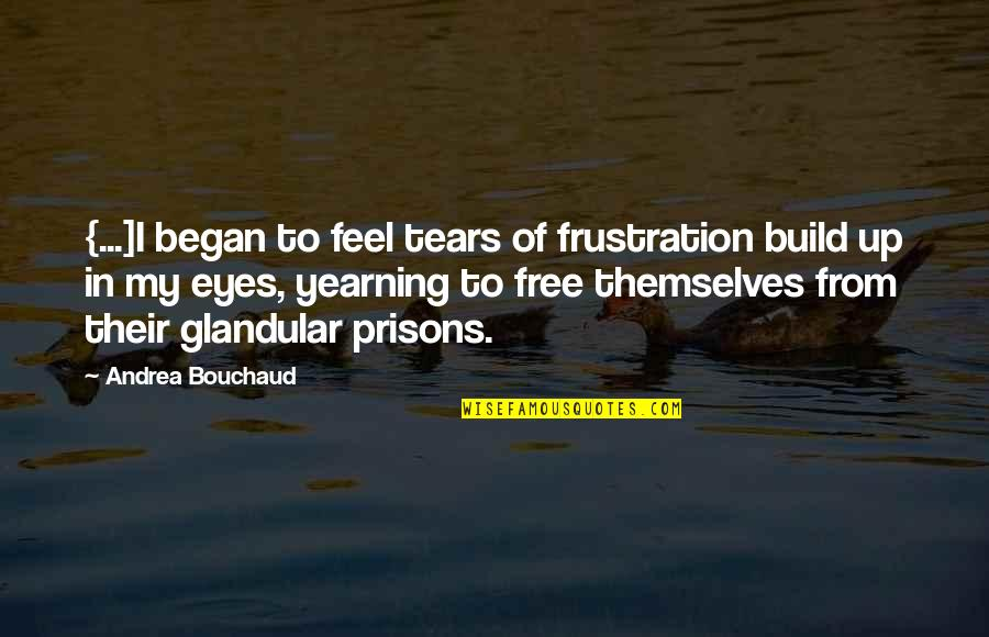 Frustration Quotes By Andrea Bouchaud: {...]I began to feel tears of frustration build