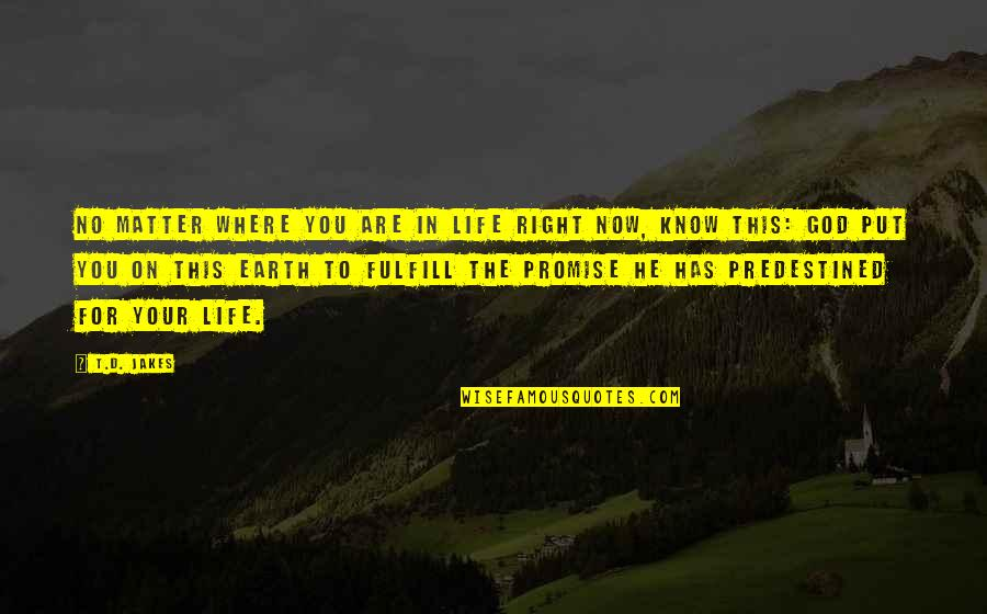 Fulfill'd Quotes By T.D. Jakes: No matter where you are in life right