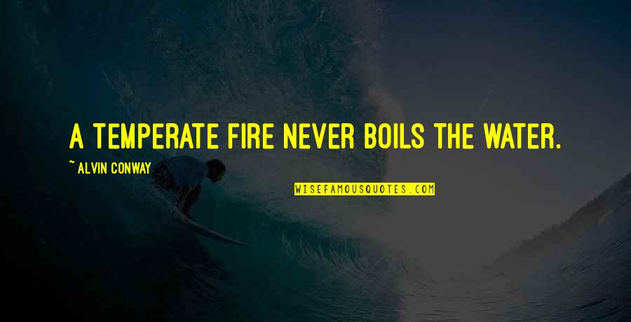 Fulfilling Your Potential Quotes By Alvin Conway: A temperate fire never boils the water.