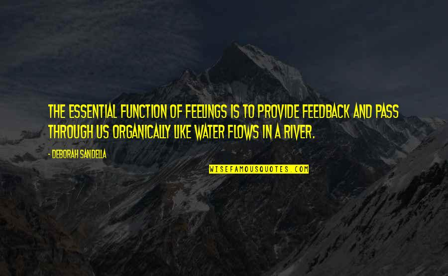 Function Of Quotes By Deborah Sandella: The essential function of feelings is to provide