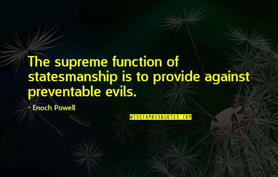 Function Of Quotes By Enoch Powell: The supreme function of statesmanship is to provide