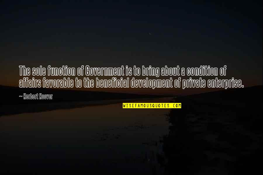 Function Of Quotes By Herbert Hoover: The sole function of Government is to bring