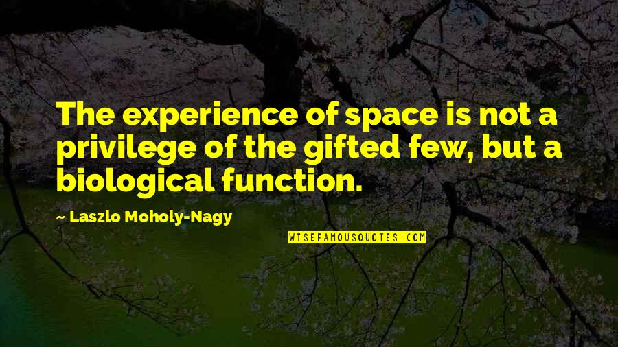 Function Of Quotes By Laszlo Moholy-Nagy: The experience of space is not a privilege