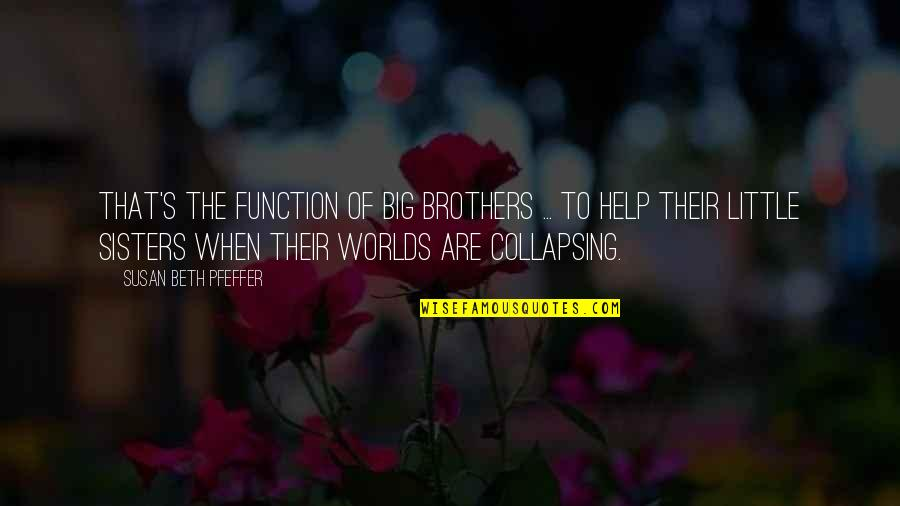 Function Of Quotes By Susan Beth Pfeffer: That's the function of big brothers ... to