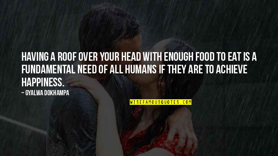 Fundamental Human Needs Quotes By Gyalwa Dokhampa: Having a roof over your head with enough