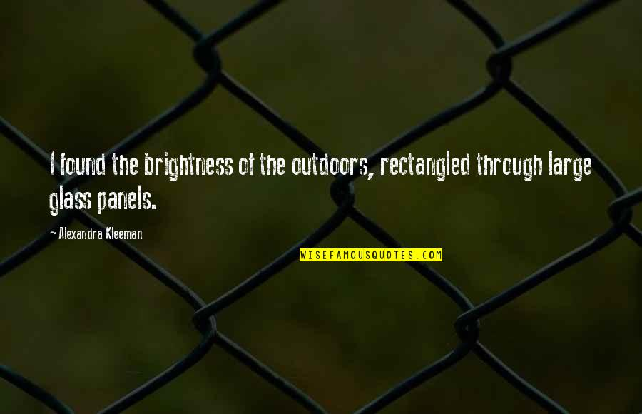 Funhouse Mirror Quotes By Alexandra Kleeman: I found the brightness of the outdoors, rectangled