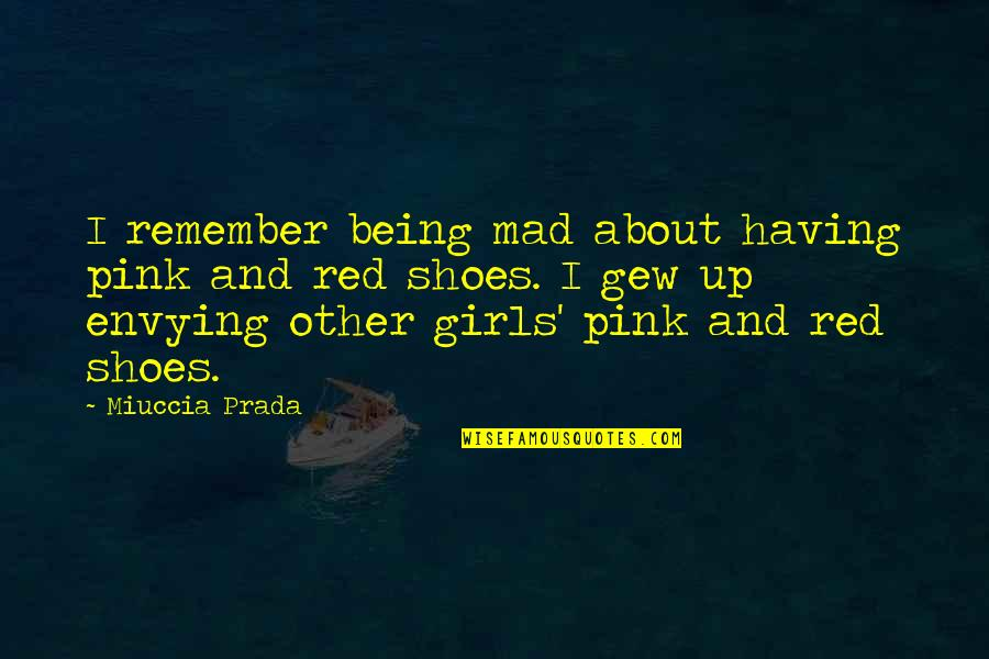 Funniest Flight Attendant Quotes By Miuccia Prada: I remember being mad about having pink and
