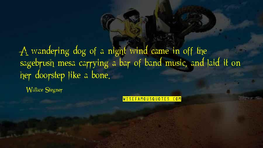 Funny Anti Male Quotes By Wallace Stegner: A wandering dog of a night wind came