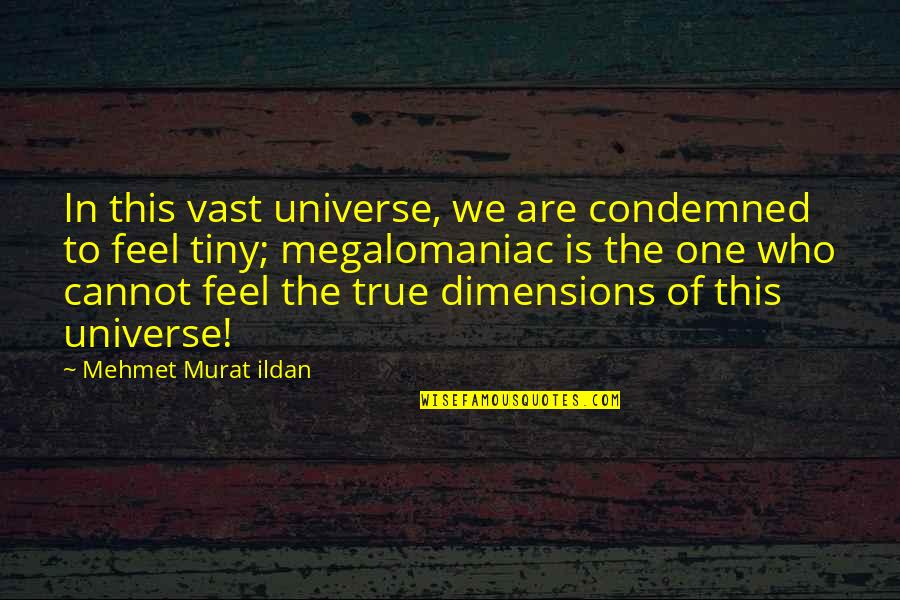 Funny Arm Workout Quotes By Mehmet Murat Ildan: In this vast universe, we are condemned to