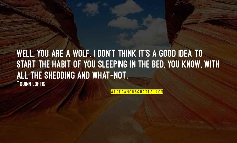 Funny Bed Quotes By Quinn Loftis: Well, you are a wolf, I don't think