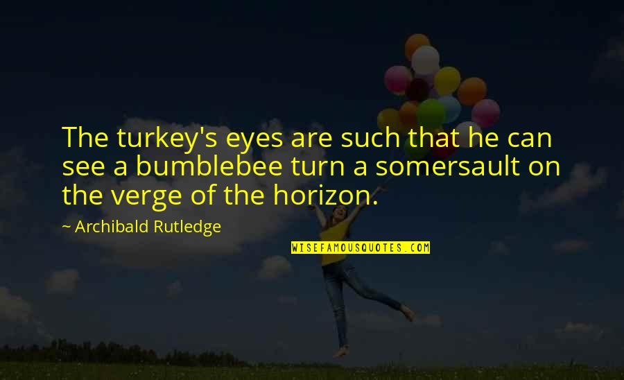 Funny Booty Quotes By Archibald Rutledge: The turkey's eyes are such that he can