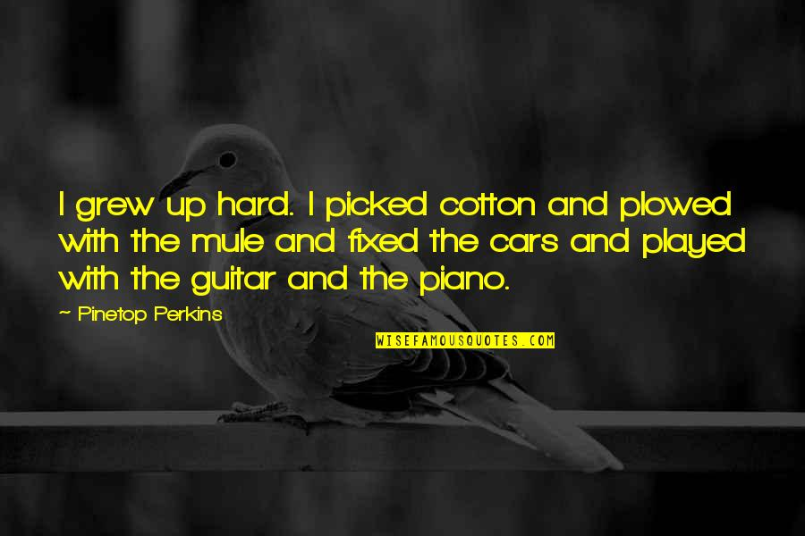 Funny Budgie Quotes By Pinetop Perkins: I grew up hard. I picked cotton and