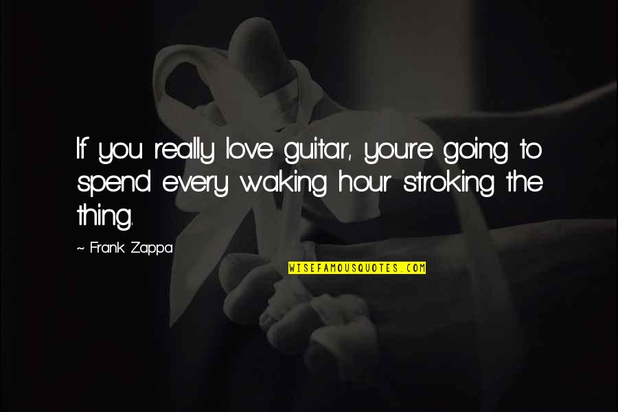 Funny But Inspiring Love Quotes By Frank Zappa: If you really love guitar, you're going to