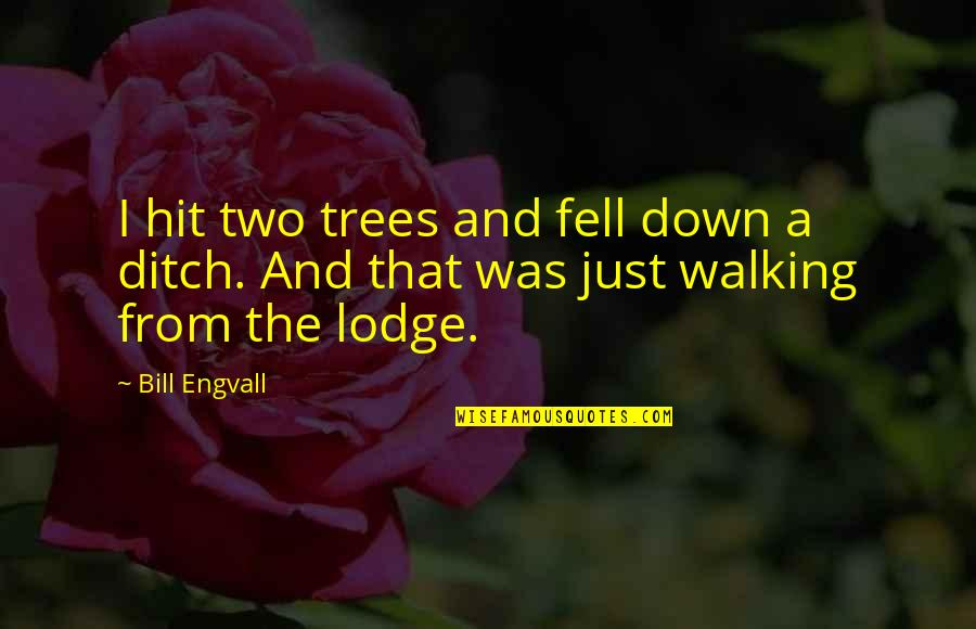Funny Down And Out Quotes By Bill Engvall: I hit two trees and fell down a