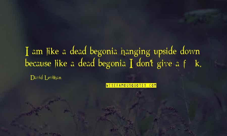 Funny Down And Out Quotes By David Levithan: I am like a dead begonia hanging upside