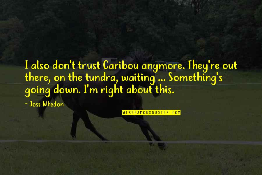 Funny Down And Out Quotes By Joss Whedon: I also don't trust Caribou anymore. They're out