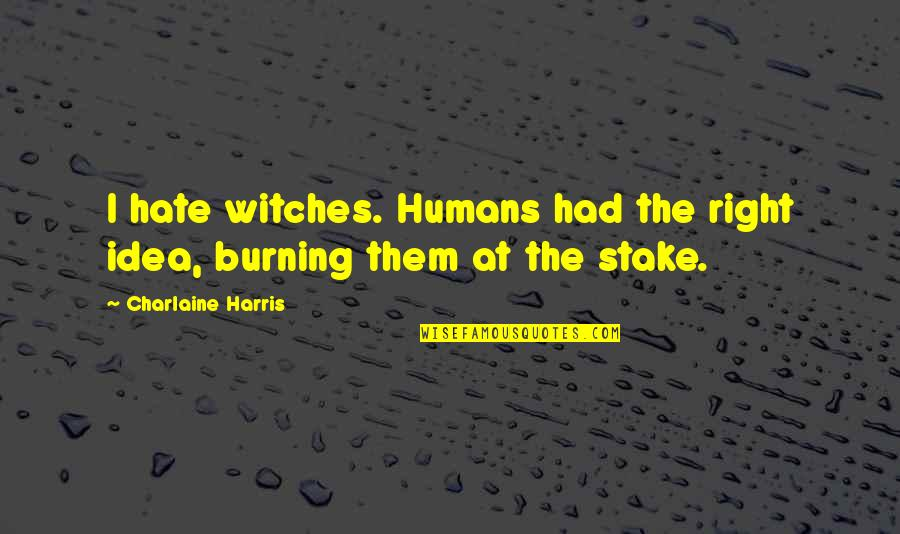 Funny Eric Northman Quotes By Charlaine Harris: I hate witches. Humans had the right idea,