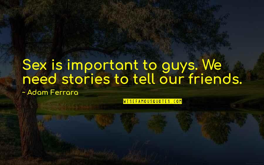 Funny Friends Quotes By Adam Ferrara: Sex is important to guys. We need stories
