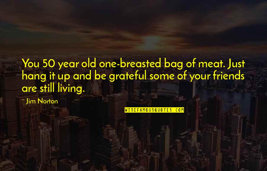 Funny Friends Quotes By Jim Norton: You 50 year old one-breasted bag of meat.