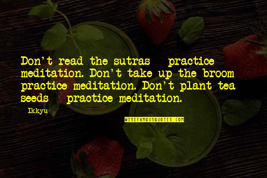 Funny Garage Door Quotes By Ikkyu: Don't read the sutras - practice meditation. Don't