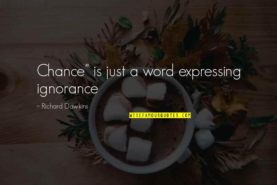 """Funny Halloween Tombstone Quotes By Richard Dawkins: Chance"""" is just a word expressing ignorance"""