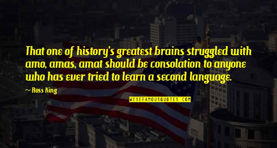 Funny Halo Quotes By Ross King: That one of history's greatest brains struggled with