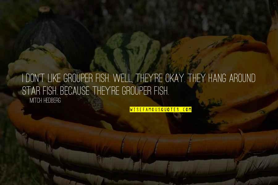 Funny Hang Up Quotes By Mitch Hedberg: I don't like grouper fish. Well, they're okay.