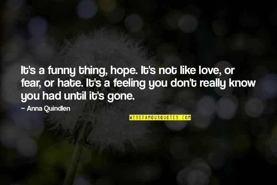 Funny I Don Hate You Quotes By Anna Quindlen: It's a funny thing, hope. It's not like