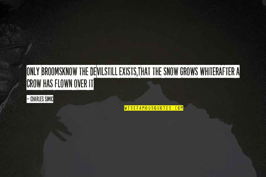 Funny Instagram Quotes By Charles Simic: Only broomsKnow the devilStill exists,That the snow grows