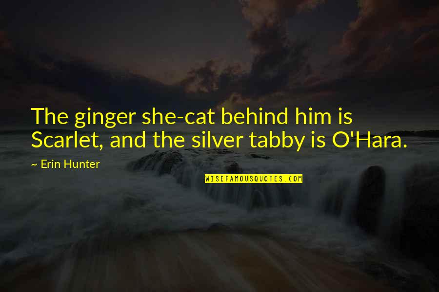 Funny Intelligent Life Quotes By Erin Hunter: The ginger she-cat behind him is Scarlet, and