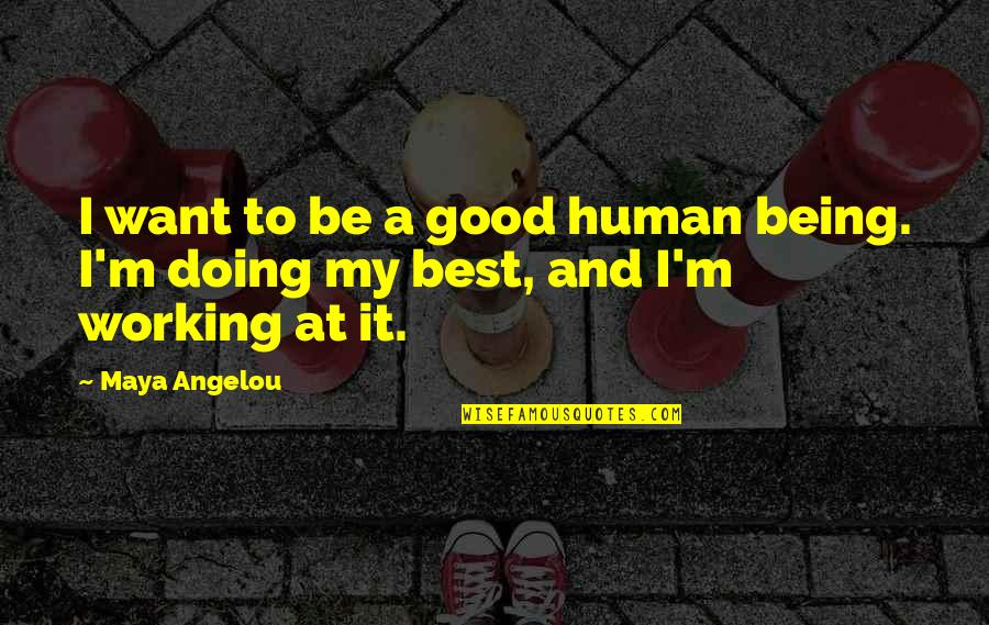 Funny Male Nurse Quotes By Maya Angelou: I want to be a good human being.