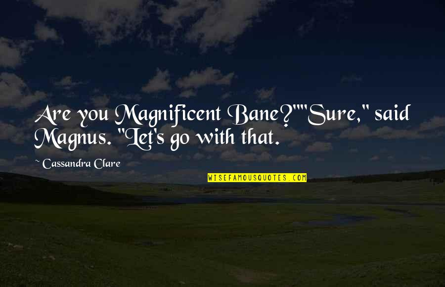 """Funny Misheard Quotes By Cassandra Clare: Are you Magnificent Bane?""""""""Sure,"""" said Magnus. """"Let's go"""