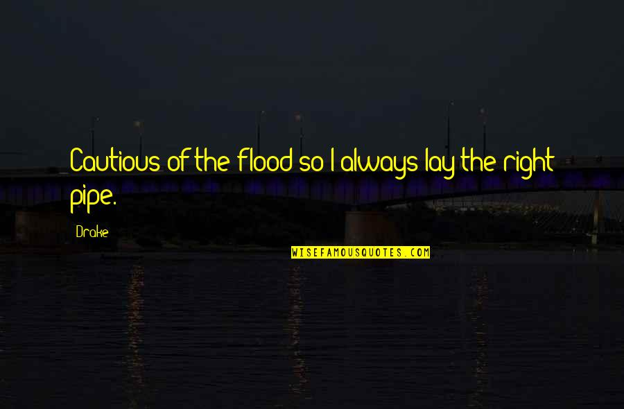 Funny Pam Quotes By Drake: Cautious of the flood so I always lay