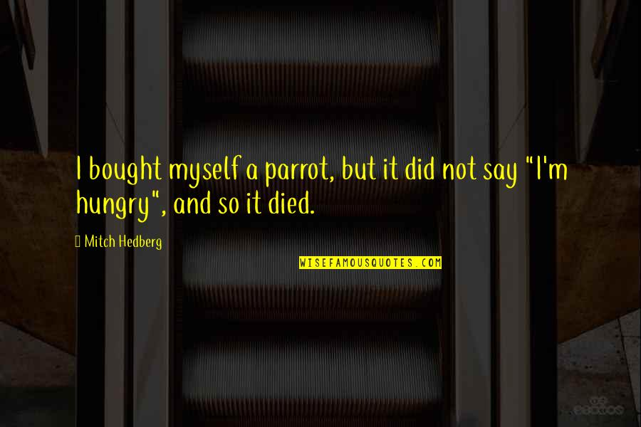 Funny Parrot Quotes By Mitch Hedberg: I bought myself a parrot, but it did