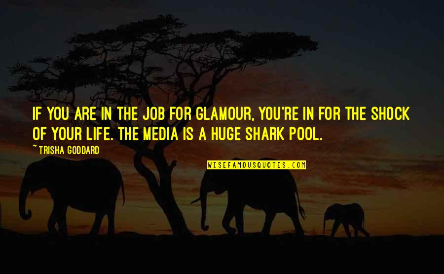 Funny Pigeon Quotes By Trisha Goddard: If you are in the job for glamour,
