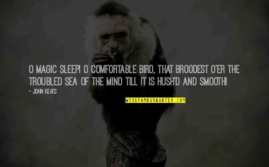 Funny Prostitution Quotes By John Keats: O magic sleep! O comfortable bird, That broodest