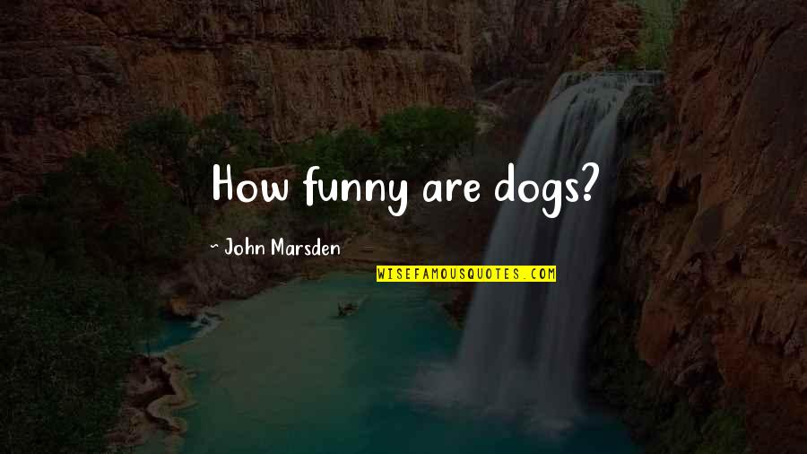 Funny Random Quotes By John Marsden: How funny are dogs?