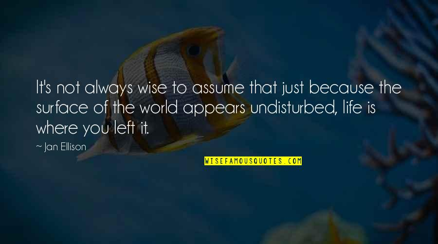Funny Sardar Quotes By Jan Ellison: It's not always wise to assume that just