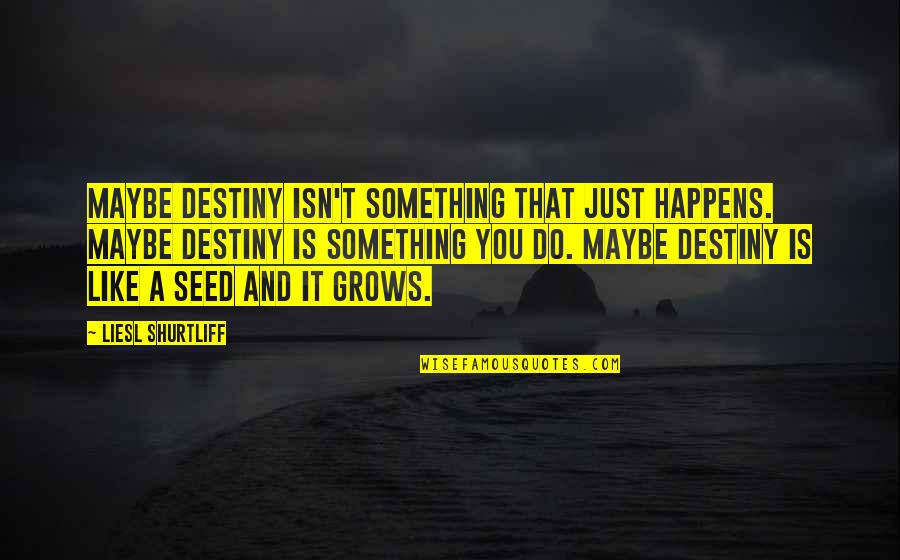 Funny Scarf Quotes By Liesl Shurtliff: Maybe destiny isn't something that just happens. Maybe