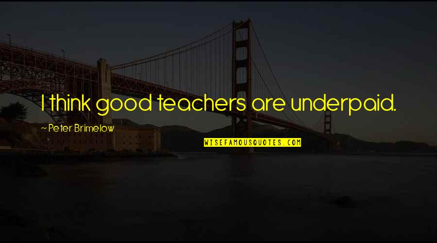 Funny Screw Love Quotes By Peter Brimelow: I think good teachers are underpaid.
