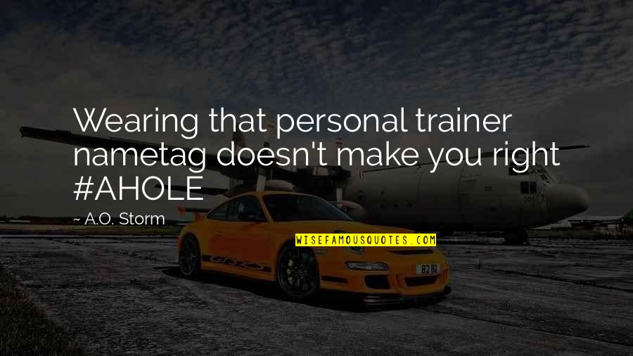 Funny Storm Quotes By A.O. Storm: Wearing that personal trainer nametag doesn't make you