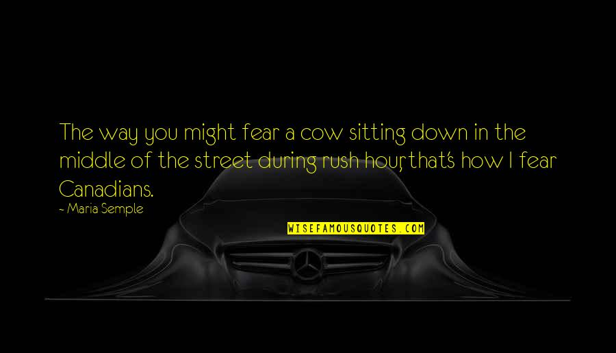 Funny Street Quotes By Maria Semple: The way you might fear a cow sitting