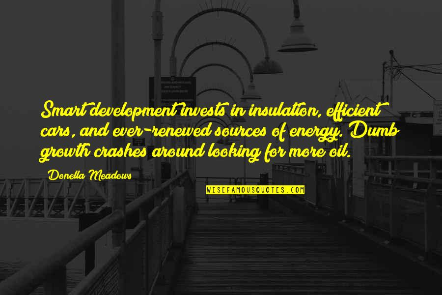 Funny Tuner Car Quotes By Donella Meadows: Smart development invests in insulation, efficient cars, and