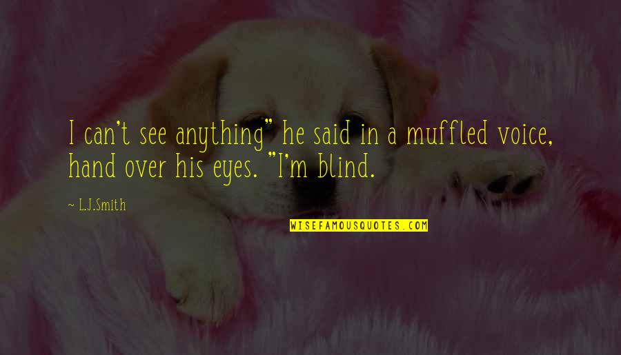 """Funny Voice Quotes By L.J.Smith: I can't see anything"""" he said in a"""