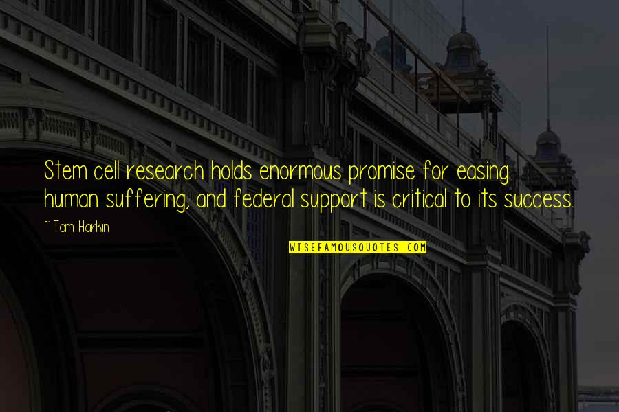 Funny War And Peace Quotes By Tom Harkin: Stem cell research holds enormous promise for easing