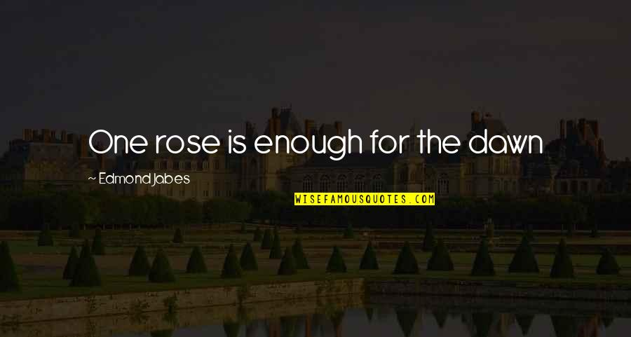 Funny Wealth Management Quotes By Edmond Jabes: One rose is enough for the dawn