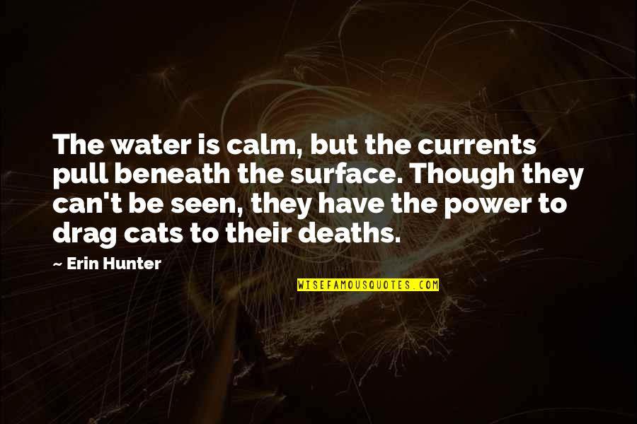 Funny Wealth Management Quotes By Erin Hunter: The water is calm, but the currents pull