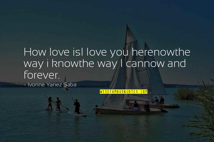Funny Weenie Dog Quotes By Ivonne Yanez Saba: How love isI Iove you herenowthe way i