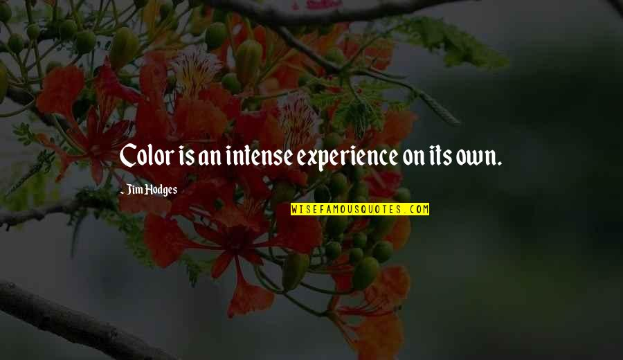 Funny Workaholics Quotes By Jim Hodges: Color is an intense experience on its own.